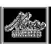ninaricci logo