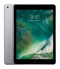 Apple iPad 9.7 (2017) Wi-Fi 32GB Grey