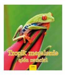 Ancela Royston - Tropik meşələrdə qida zənciri