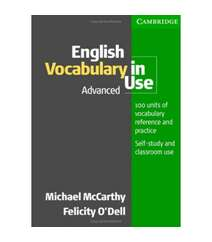 English vocabulary in use--advanced