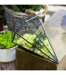8 Bucaqlı Piramida Formalı Terrarium