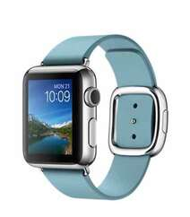 APPLE WATCH 38MM STAINLESS STEEL CASE WITH BLUE JAY MODERN BUCKLE (MMFC2) LARGE
