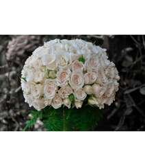 31 ədəd ağ roza