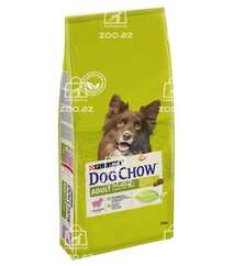 Dog Chow корм для собак старше 1 года с ягненком (целый мешок 14 кг)