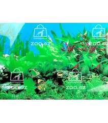 Фон для аквариума выс. 40 см 1 м