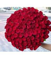 101 roza